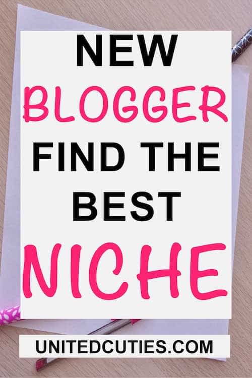 genius ideas to find a niche